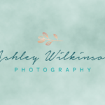 ashley wilkinson photography