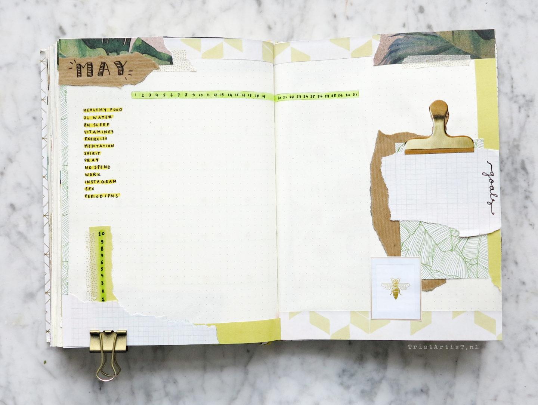 Bullet journal plan wiht me may 2018
