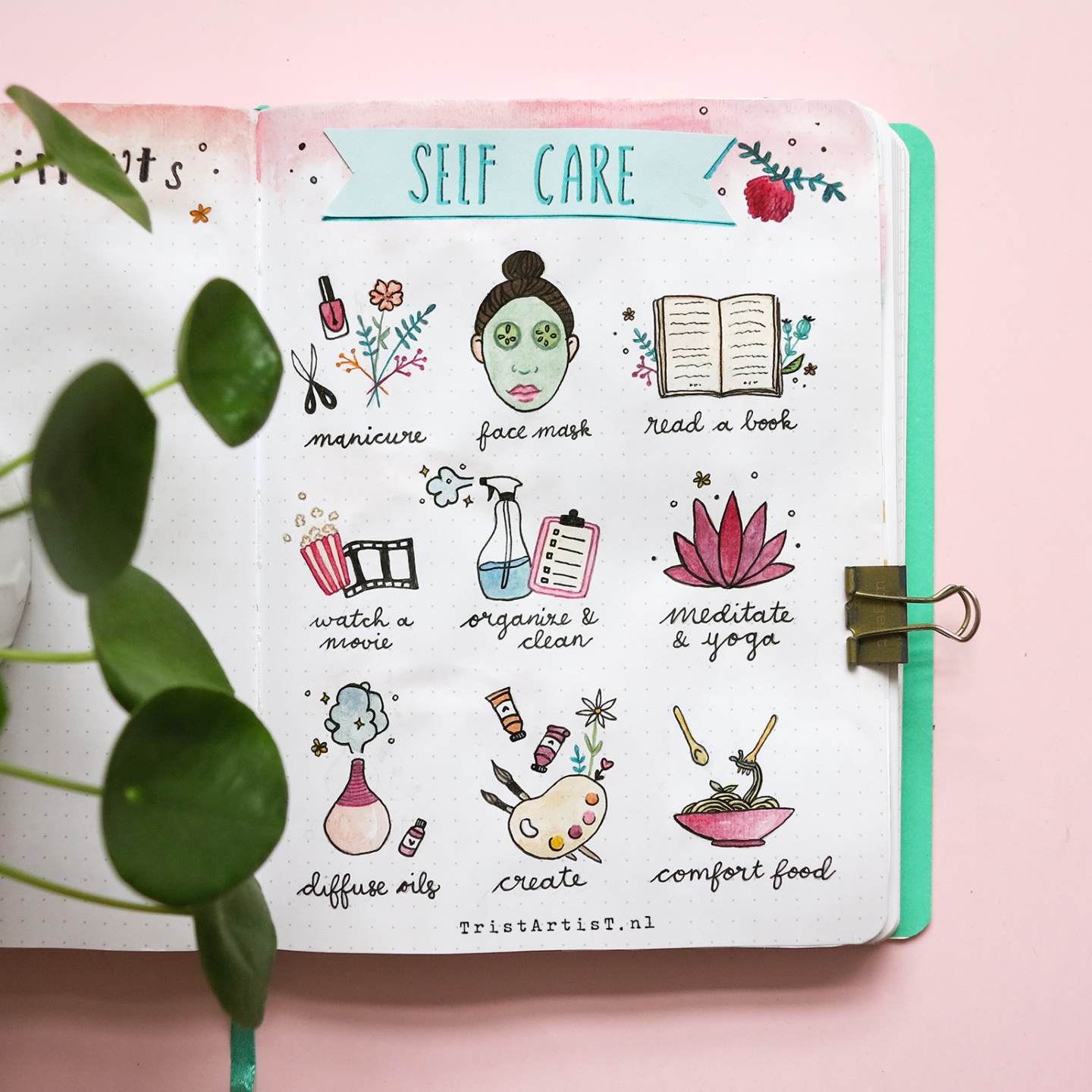 bullet journal plan with me february 2019 selfcare